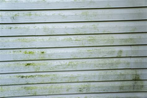 how to remove mold from house siding how to remove mold from house siding 28 images how to remove mold mildew stains on