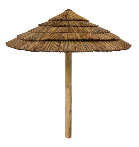 Custom Made Palm Trees..Thatched Umbrellas