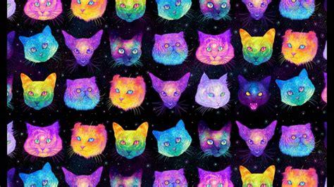imagenes para fondo de pantalla gatos fondos de pantalla gatos galaxy youtube