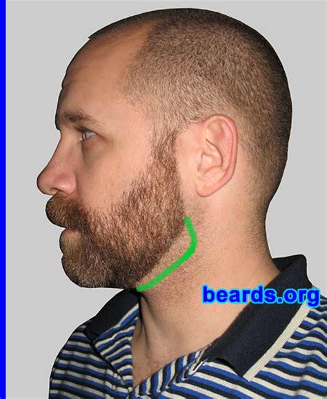 beard vs pubic hair trends designing a neck line for your full beard all about beards