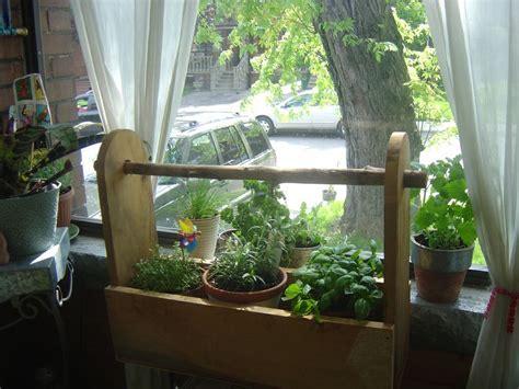 Window Herb Garden Ideas 26 Best Growing Herbs Indoors Images On