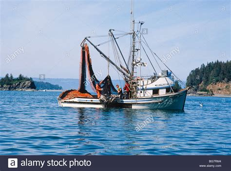 commercial fishing boat auctions list of synonyms and antonyms of the word seine boat