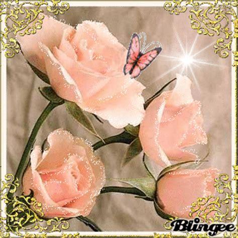 bellas imágenes in english rosas bellas picture 83015088 blingee com