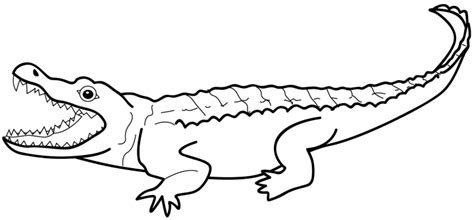 alligator mouth coloring page crocodile drawing outline clipart panda free clipart
