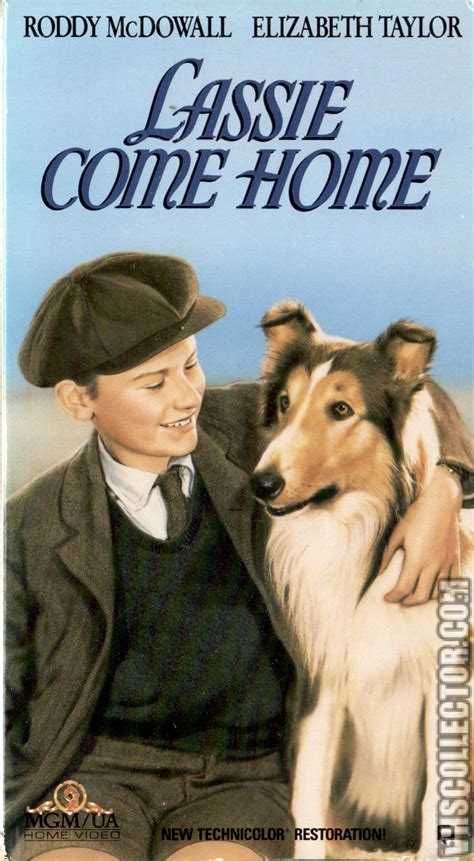 lassie come home vhs www pixshark images galleries