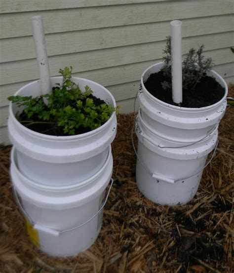 self watering planter self watering garden containers 5 gallon buckets upated