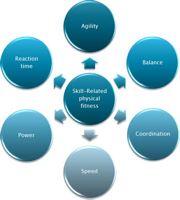 components of physical fitness related skills fitness