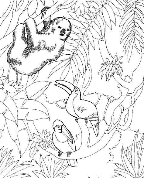 zoo coloring pages printable free printable zoo coloring pages for kids
