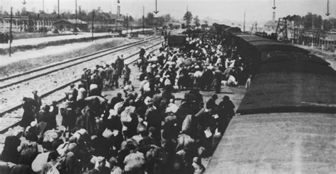 the holocaust in history arriving at auschwitz holocaust concentration cs pictures the holocaust history com