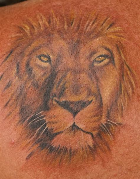 lion head tattoos www imgkid the image kid has it