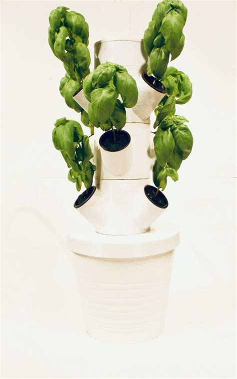 pin  hydroponics