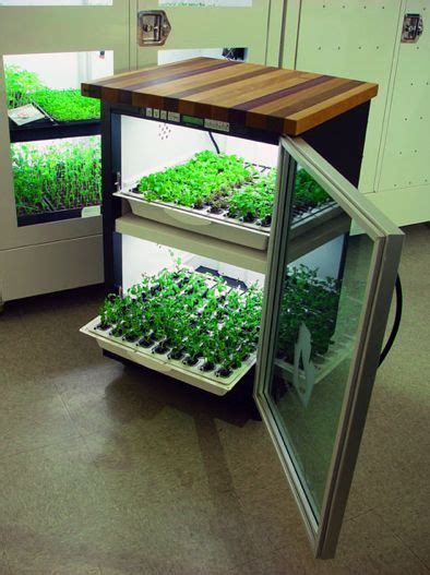 Pinterest The World S Catalog Of Ideas Indoor Vegetable Gardening Supplies