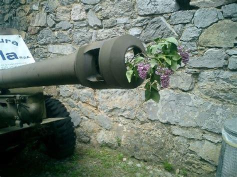 fiori nei cannoni 17 mettete dei fiori nei vostri cannoni
