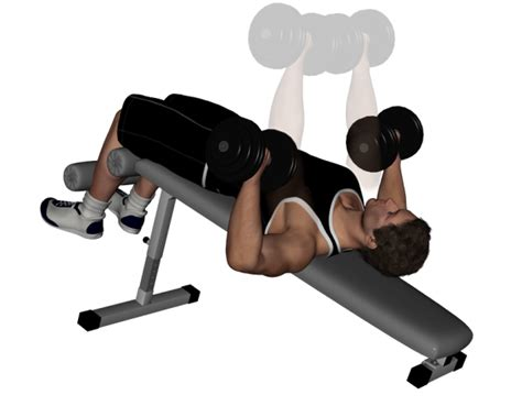 dumbbell and bench workout decline dumbbell bench press bodybuilding wizard