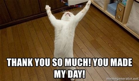 Thank You Cat Meme - thank you so much you made my day praise the lord cat