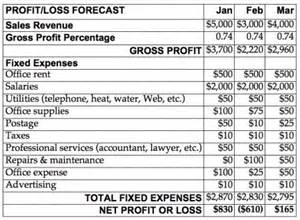 profit and loss forecast template eye on image financial planning part 2 black