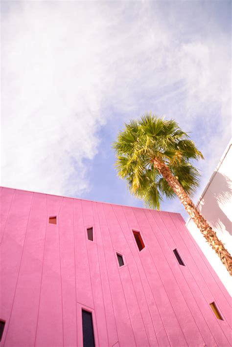 the color palette of palm springs california