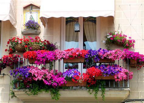 Great Balcony Flower Garden Ideas ? BALCONY IDEAS : Smart