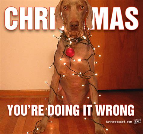 Happy Christmas Meme - happy meme monday trish marie dawson