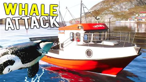 fishing boat expensive whale attacks expensive fishing boat deadliest catch
