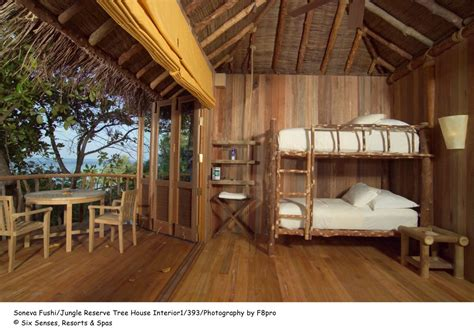tree house interiors interior design inspirational beautiful and interesting jungle reverse tree house