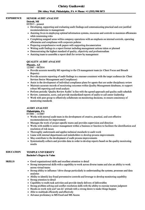 Audit Analyst Sle Resume by Audit Analyst Resume Sles Velvet