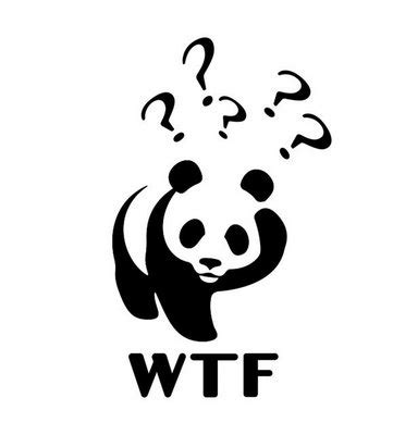 wwf bear for presentation questions pictures for