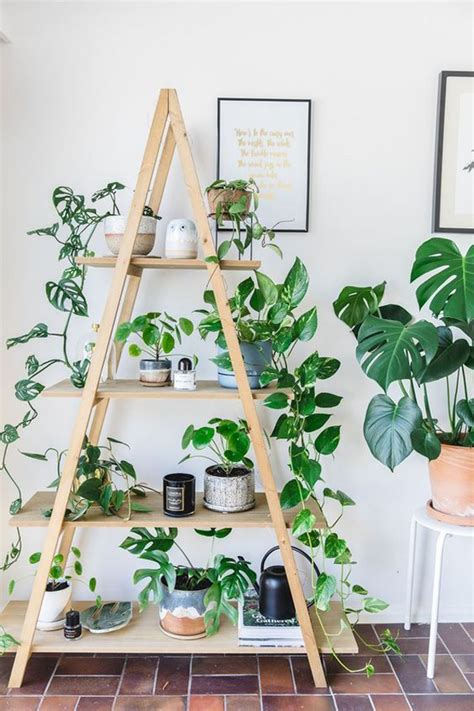 modern plant shelf ideas  small space homemydesign