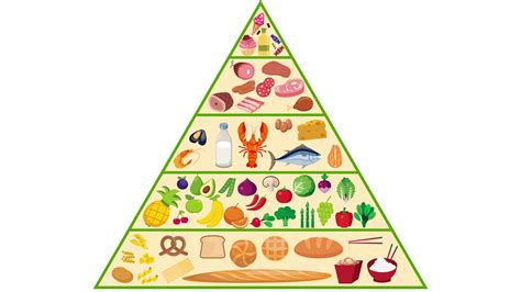 food pyramid food pyramid nutrition animation motion background
