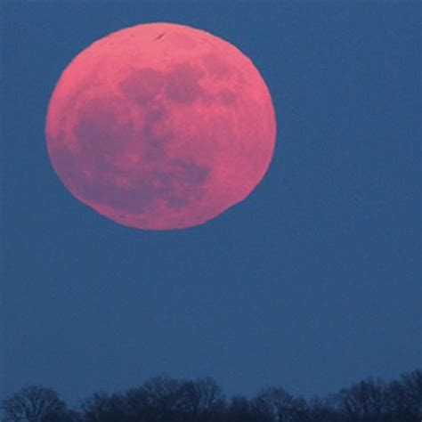 pink moon april 2017 pink moon april 2017 pink moon april 2017 pink moon in april 2017 why the moon