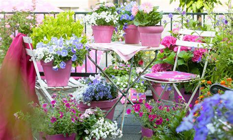 wohnfläche balkon piante da balcone tutte le piante e i fiori per un