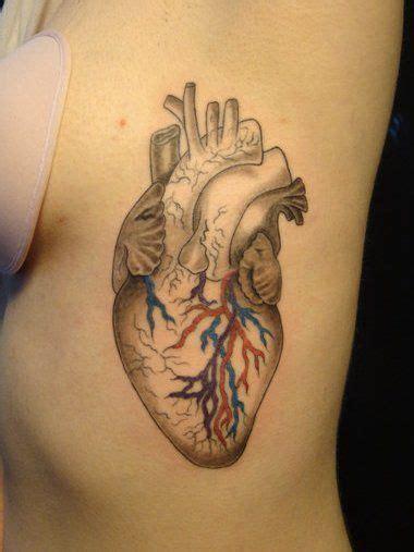 anatomically correct heart tattoo best 25 anatomical tattoos ideas on human
