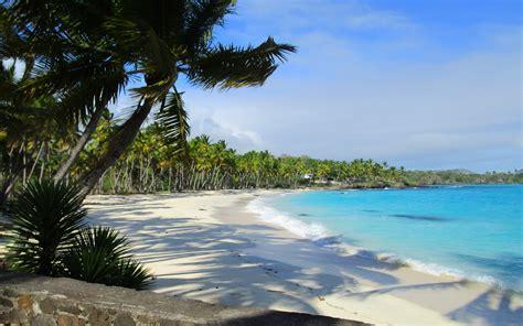 landscape nature beach sand sea palm trees morning