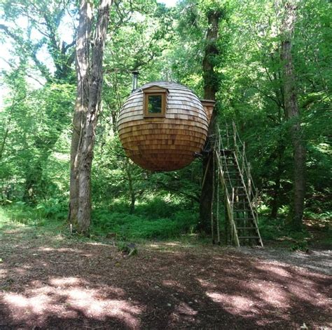 coolest treehouses 17 best images about visit cornwall on pinterest stormy