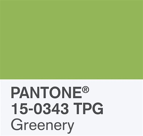 2017 pantone color of the year greenery blulabel colore pantone 2017 greenery architettura e design a roma