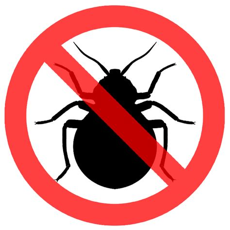 how to keep bed bugs away bed bugs and how to keep them away 1heart caregiver services