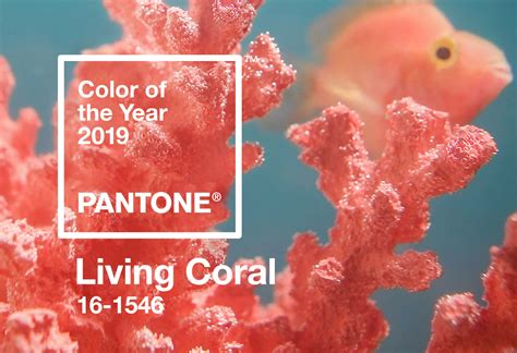color of pantone color of the year 2019 shop pantone living coral