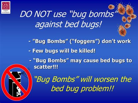 bed bug foggers that work bedbug101slideshow