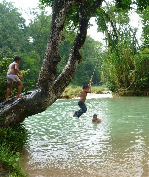 the rope swing the falls where arnold escaped predator and the slinky