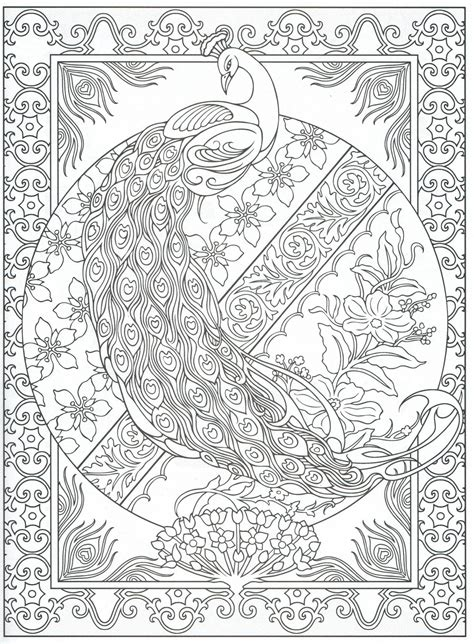 peacock coloring page for adults 2 31 color pages