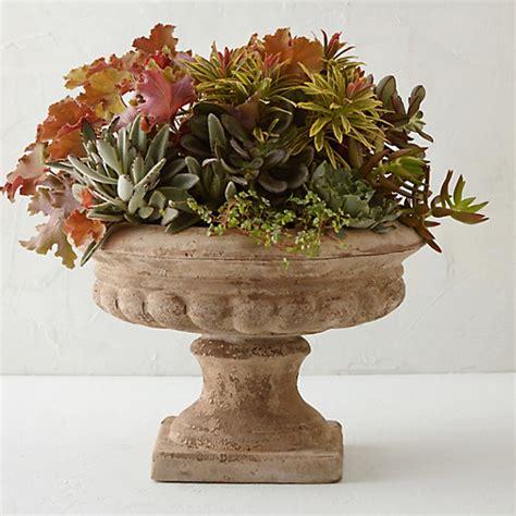 terracotta urn planter terrain