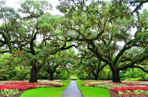brookgreen gardens beautiful charleston