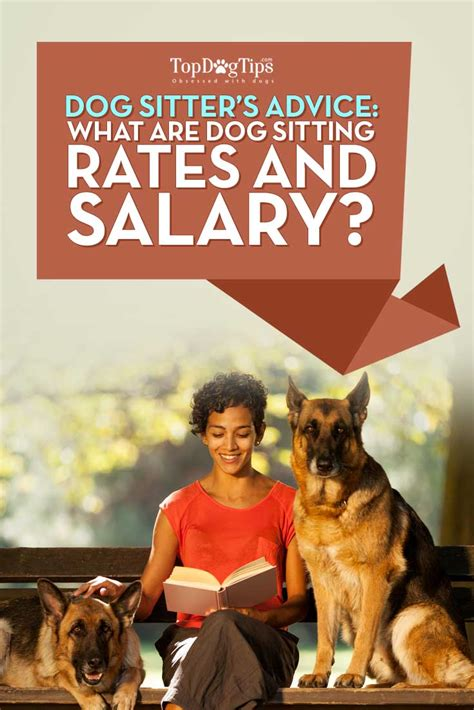 sitting rates ask a sitter sitting rates sitter salary top tips