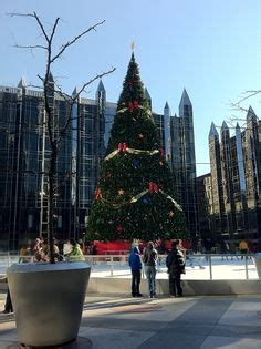 pool city christmas trees pittsburgh the one and only on pittsburgh pennsylvania and swimming pools