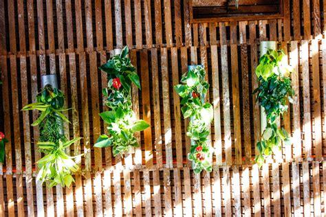 archives living walls truevert 174 vertical garden