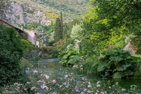 giardini di ninfa immagini i giardini di ninfa giardino di ninfa with i giardini di
