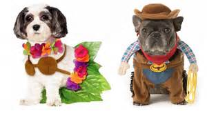 Good And Easy Halloween Costume Ideas Halloween Dog Costume Ideas 32 Easy Cute Costumes For Your Canine Today Com