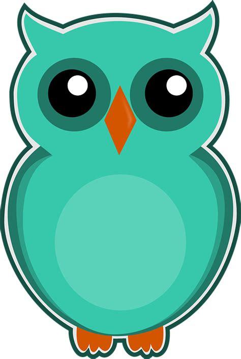 Animasi Burung Hantu Owl Bird owl blue green 183 free image on pixabay