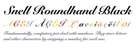 Roundhand Shecker snell roundhand 174 black fonts