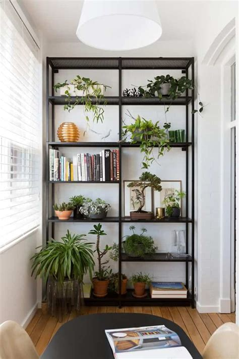 How To Decorate Your Interior With Green Indoor Plants And Indoor Plant Shelves